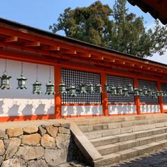 石段の模様/二月堂/春日大社/奈良公園/LIMIAおでかけ部/建築/... 奈良の春。(3枚目)