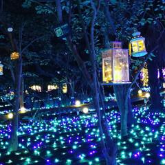 幸せな時間/江ノ島/イルミネーション/家族でおでかけ/冬 我が家は毎年、家族で イルミネーションを…