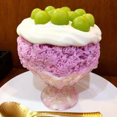 かき氷/グルメ/フード/スイーツ/おでかけ/ピンク/... かき氷食べてきました👍めっちゃ可愛い💕で…
