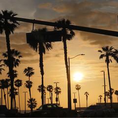 西海岸/アメリカ/ハンティントンビーチ/サンセット/GW/おでかけ/... ハンティントンビーチ 昼間の爽やかなブル…(2枚目)