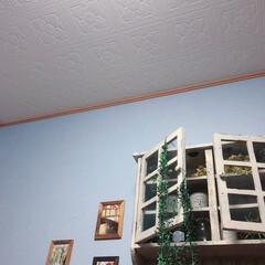 フェイクグリーン/お気に入り壁紙/アンティーク棚/壁面インテリア/壁面/100均/... 我が家の壁面にあった アンティーク棚  …