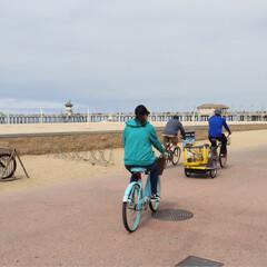 ハンティントンビーチ/西海岸/アメリカ/レンタルサイクル/自転車/おでかけ/... アメリカ西海岸ハンティントンビーチ  レ…