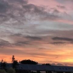 夕焼け/空/LIMIAおでかけ部/フォロー大歓迎/おでかけ/風景/... 夕焼けって… 見たらお家に帰ろって思っち…