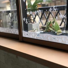 テーブルランナー/窓デコ/クリスマス/100均/ダイソー/セリア/... 100均アイテムとニトリのテーブルランナ…(3枚目)