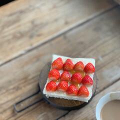 朝ごパン/テーブルフォト/天板/トーストアレンジ/イチゴ/おうちカフェ/... 〜おうちカフェ〜  小さな不揃いの苺を半…