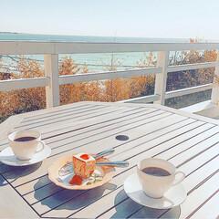 海/横須賀/カフェ/アンティーク/ブックカフェ/絶景カフェ/... 海が一望できるカフェ☕️  テラス席でた…
