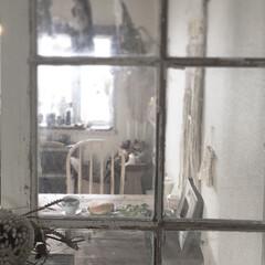 vintage/インテリア/DIY/おうちごはん/間仕切り/おうちカフェ/... この窓からみる風景が1番好き✨ ダミーの…