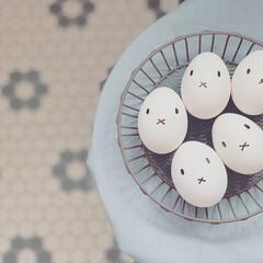 北欧/カレーライス/ゆでたまご/モノトーン/ミッフィー/復活祭/... happy Easter 🐰  晩ご飯は…