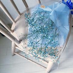 お花のある暮らし/プレゼント/ブルー/baby'sbreath/かすみ草/花言葉/... プレゼントにいただいた こちらは ブルー…
