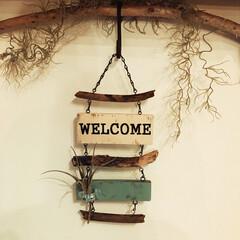 枝もの/野地板DIY/野地板/端材DIY/端材/フォロー大歓迎/... 旅行で拾った枝と野地板の端材でラダーを作…