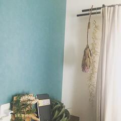 水色のクロス/水色の壁/ドライフラワーのある暮らし/ドライフラワー/インテリア カーテンレールにドライフラワーを飾ってみ…