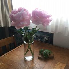 ダイソー花瓶/お花のあるインテリア/お花のある生活/お花のある暮らし/お花 近所のドラックストアで399円のお花を買…
