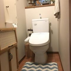 トイレインテリア/インテリア/トイレ/DIY/ニトリ/ハンドメイド シンプルなトイレです。 掃除のしやすさを…