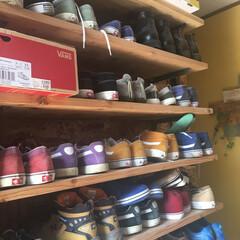 収納diy/osb合板の壁/OSB/OSB合板/くつ収納DIY/靴収納DIY/... 旦那の趣味は仕事柄もありスニーカーです。…