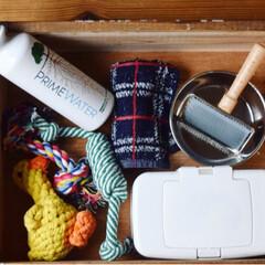 ワークショップ/DIY/コンテスト参加/フォロー大歓迎/ペット/犬/... チロルの入っている木箱は、チロルのお世話…(2枚目)