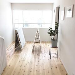 ベッドルーム/寝室/すのこベッド/ベッド/家具/ニトリ/... お掃除。 . . 久しぶりの晴れの日、 …