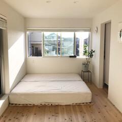 ベッド/ベッドルーム/寝室/インテリア/ニトリ ✳︎ ハレノヒ。 洗いたてのシーツが、お…