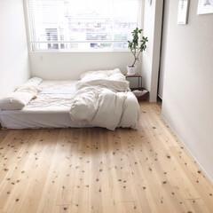 寝室/スノコベッド/ベッド/ベッドルーム/インテリア/ニトリ ✳︎ 掛け布団を干してふかふかです。 そ…