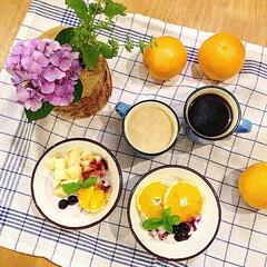 朝ごはん/朝食/琺瑯/オレンジ/梅雨/ヨーグルト/... 梅雨でジメジメな朝!でも、紫陽花を飾った…