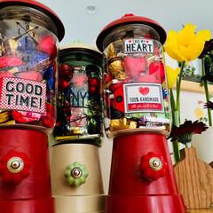 キャンディポット/成城石井/チョコレート/バレンタイン/フード 家族には 成城石井の 大袋チョコ🍫を キ…