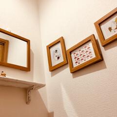 棚は ミンネ/トイレの壁/ムーミンポストカード/ムーミン/フォトフレーム/雑貨/... glow の 付録 ムーミンの ポストカ…