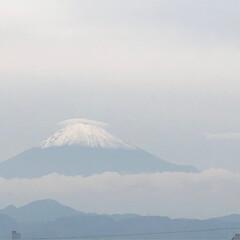 花/キルフェボン/お弁当/富士山🗻 薄く曇りで 見にくいですが、富士山🗻が …(1枚目)