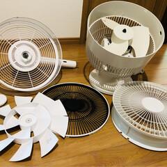 熱中症対策/アイス/サーキュレーター/扇風機 扇風機と、サーキュレーターの 羽根 洗っ…