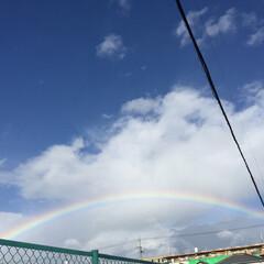 3月スタート/生きてる よろこび/青空/虹🌈 連投  すみません🙏  強風〜〜雨〜〜虹…