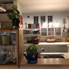 こぐまランプ製作所/キッチン/キッチン雑貨 今日も 一日 お疲れ様でした 夜の キッ…(3枚目)