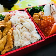 海鮮丼/お弁当 地元デパート  松坂屋の 北海道美味いも…