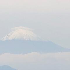 花/キルフェボン/お弁当/富士山🗻 薄く曇りで 見にくいですが、富士山🗻が …(2枚目)