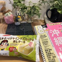 nagomiさんの陶芸作品/ペコちゃん好き/おやつ 午後のTea Time ペコちゃん発見 …