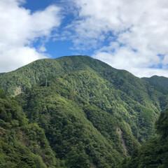 温泉で しっとりスベスベ/日帰りでも 楽しめる/おでかけ 静岡県川根本町寸又峡温泉♨️ 夢の吊り橋…(2枚目)