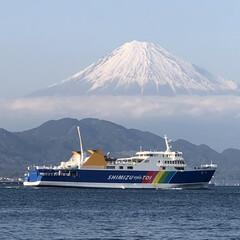 ドライブ/散歩/マルチーズ/世界遺産/三保の松原/富士山/... おウチに居たら、ちょっとクサクサしたので…