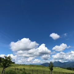 日本平/富士山/おでかけ/LIMIAファンクラブ/LIMIAおでかけ部/LIMIAな暮らし 久しぶりー〜富士山🗻 ちょっと 雲出てい…(4枚目)
