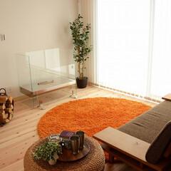 新築/不動産・住宅/滋賀県/オイル/ストーブ/薪/... オイルガスストーブのあるお家はいかがです…
