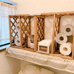 トイレの棚DIY/百均DIY/花宮令様のアイデアを真似っ子/DIY/100均/セリア