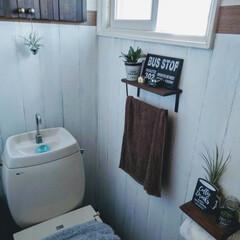 リメイクシートで大変身 トイレの壁をリメイクシートで、リメイク!…