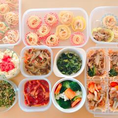 楽チン/弁当作り/作り置き/お弁当 家族…3人分の作り置き🍴 主菜は当日作り…