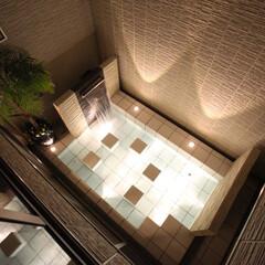 ウォーターガーデン/エクステリア/ライトアップ/庭 中庭にウォーターガーデンをご提案させて頂…
