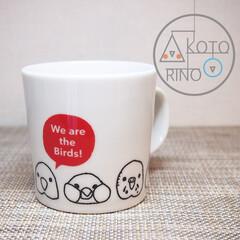 マグカップ/白/インコ/鳥/ほっこり/かわいい/... かわいい鳥さんが集合したマグカップです。…