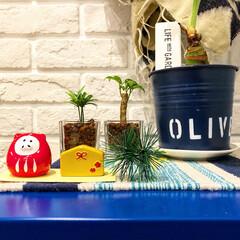 マイホーム/リビング/ブリックタイル/IKEA/干支/亥/... 3COINSで買った150円商品のお正月…
