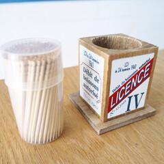 マグネット/3COINS/クワズイモ/観葉植物/フェイクグリーン/見せる収納/... アメリカンな爪楊枝入れを買いました。 生…(3枚目)