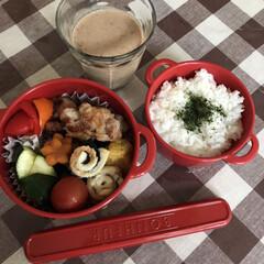ランチ お弁当☆11  *豚肉生姜焼き *パプリ…