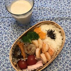 ランチ お弁当☆16  *海老炒め焼き *焼き焼…