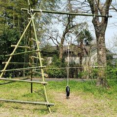 コロナ/ブランコ/アスレチック/ロープ/竹/DIY/... 嫁さんにハイジのブランコを作れと言われま…