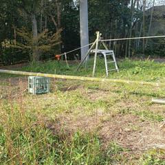 コロナ/アスレチック/ロープ/竹/DIY/ハンドメイド 竹の平均台ですね。見た目とは裏腹に相当難…