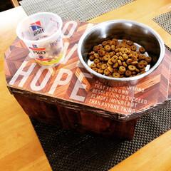 カフェ風/リメイク/簡単/ランチョンマット/トイプードル/ミニテーブル/... 端材で主人が作ってた、🐶の食卓をリメイク…(2枚目)