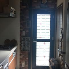 もう暑い😅/朝のキッチン