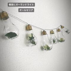フェイクグリーン/ガーランドライト/グリーン/DIY/雑貨/100均/... オールセリアでガーランドライトを製作しま…